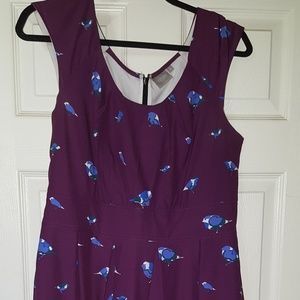 Knee length purple dress